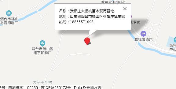 张格庄大樱桃苗木繁育基地