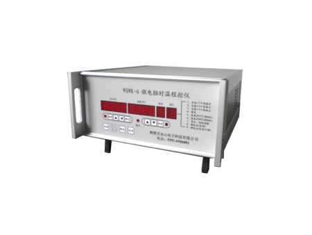 WSWK-6微电脑时温程控仪