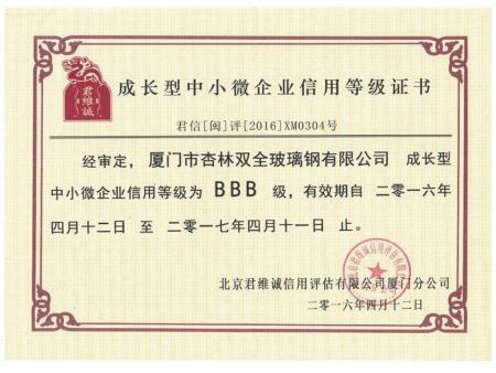 成长型企业证书