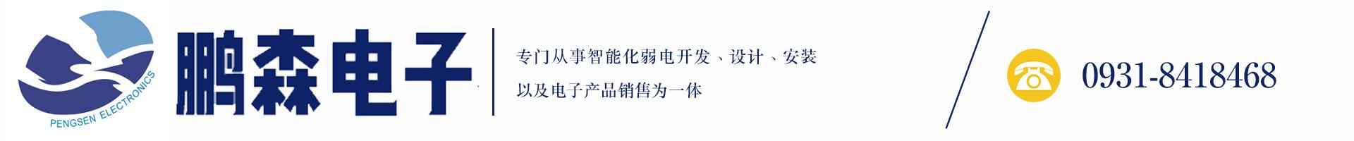 甘肃鹏森电子科技有限公司