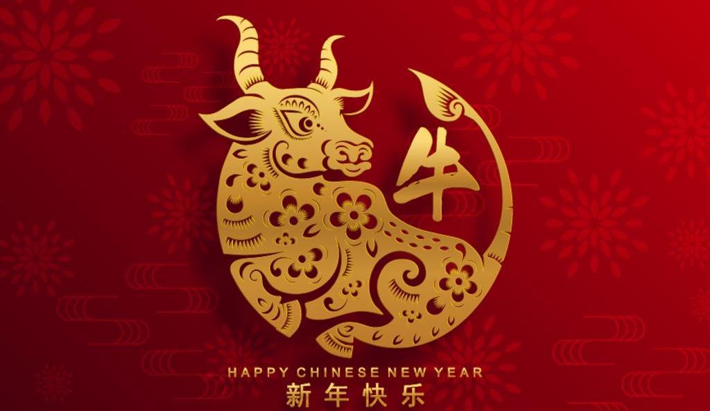 寧夏安立信建設工程有限公司祝全區人民 新年快樂