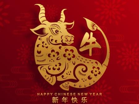 ballbet网站石嘴山长城贝博官方下载地址有限公司祝全区人民 新年快乐