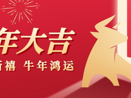 甘肃太阳雨能源集团恭祝您春节快乐