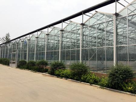 玻璃连栋温室大棚的优点