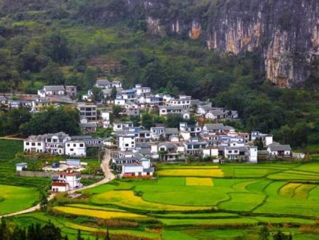 乡村振兴:如何为乡村旅游赋能?