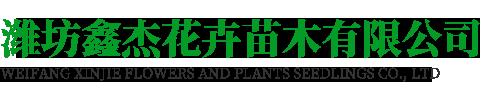 潍坊鑫杰花卉苗木有限公司