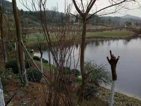 贵州开阳湿地公园