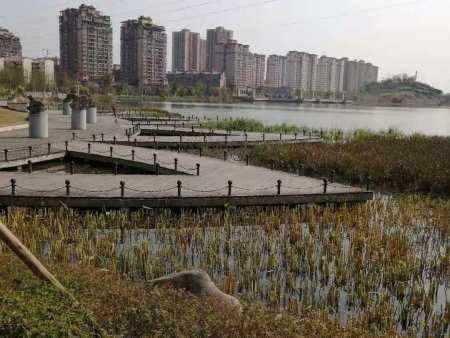 垫江牡丹生态园