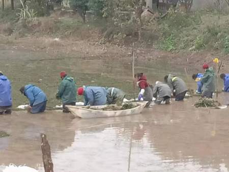 重庆长寿区沉水植物种植