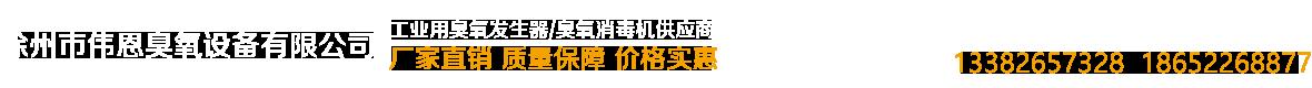 徐州市偉恩臭氧設備有限公司.