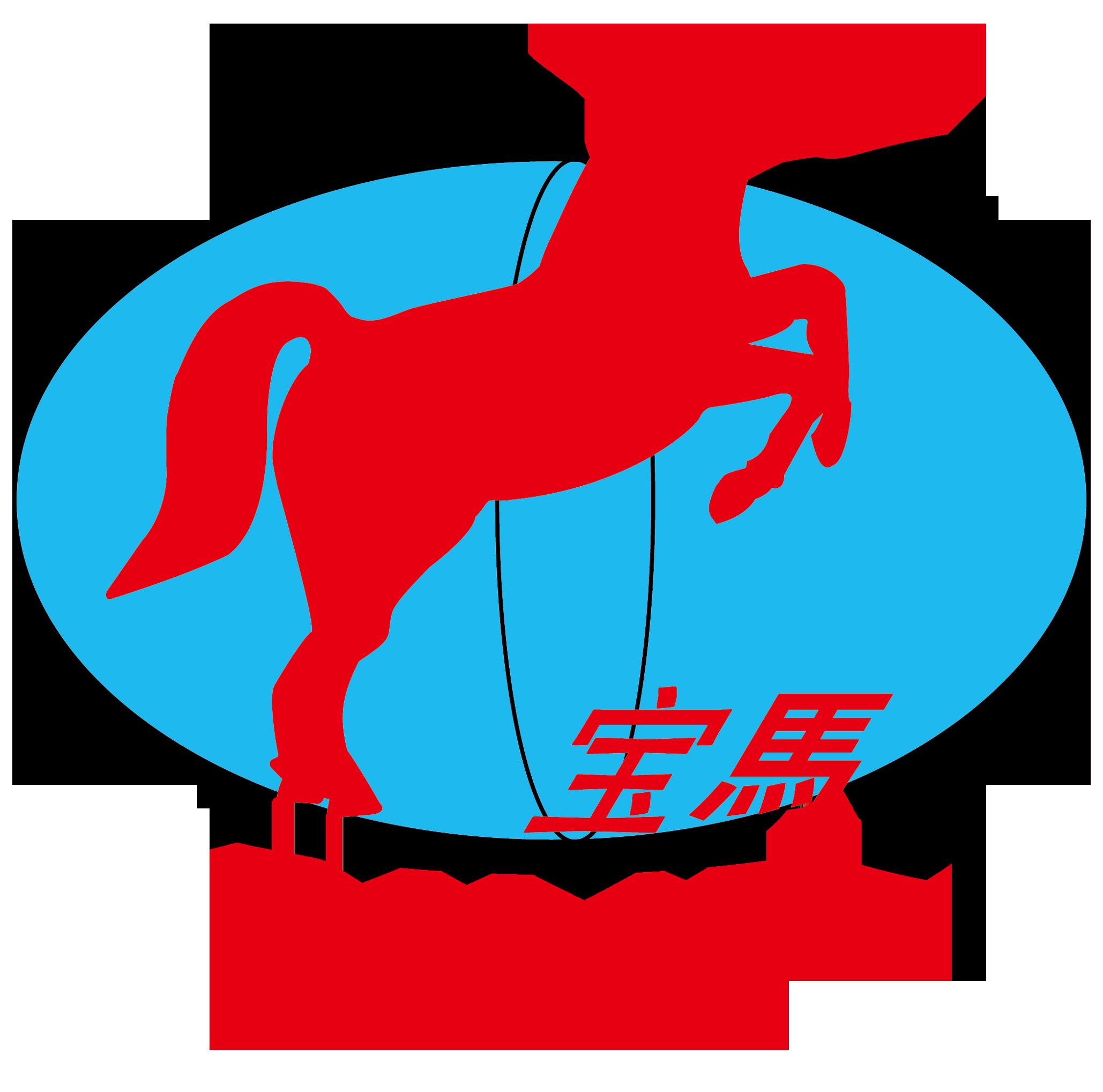 鶴壁寶馬科技集團有限公司