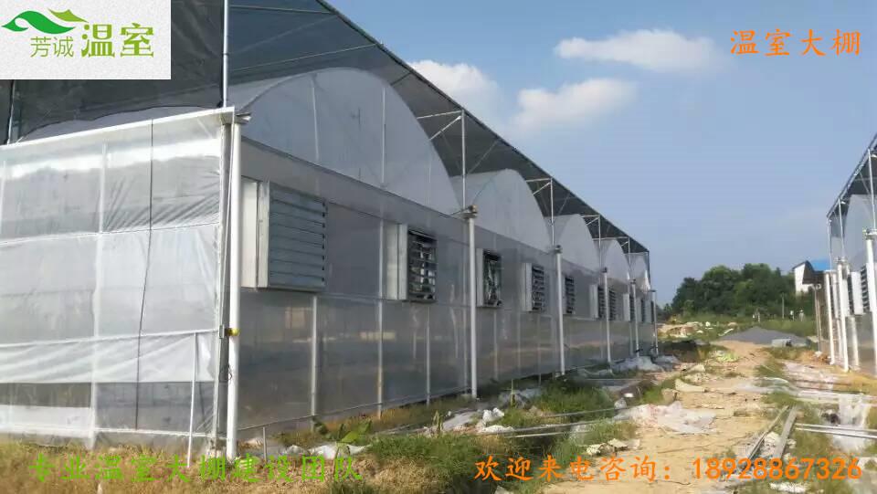 30连栋大棚湖南郴州生态餐厅.jpg