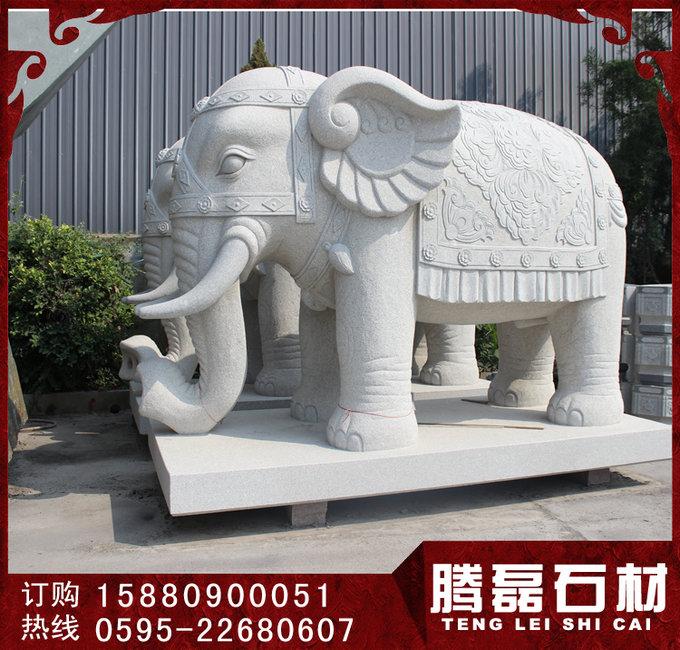 大象11.jpg