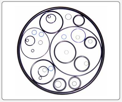 o-ring6.jpg