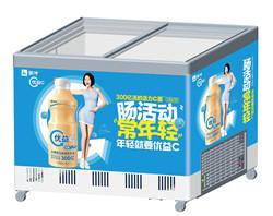 11立式冷藏展示柜LC-300400_副本.jpg