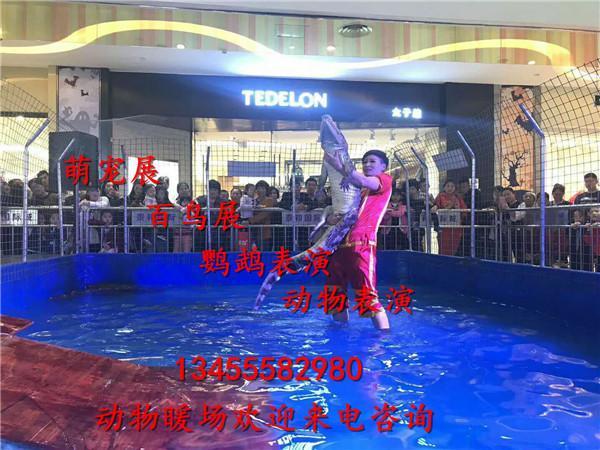 微信图片_20171110091133.jpg