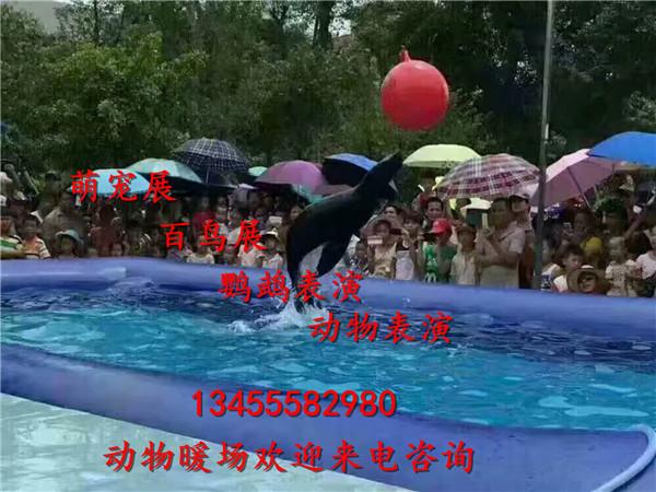 微信图片_20171110091314.jpg