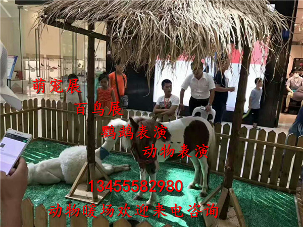 微信图片_20171110091153.jpg
