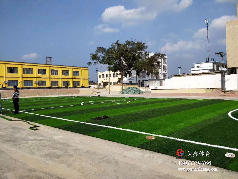 苏圩慕村小学足球场|最新案例-广西闪亮体育用品有限公司