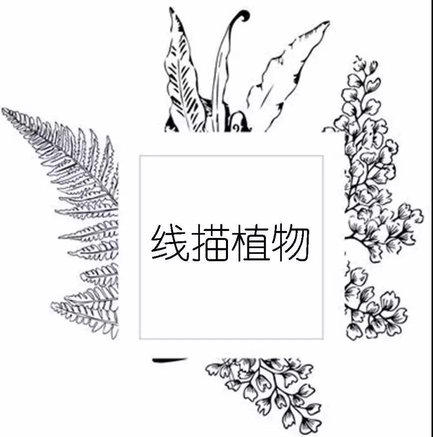 微信图片_20180323084745.jpg