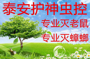 n_v276a4c1eb096d4f0ca6c3c47eb3cf6124.jpg