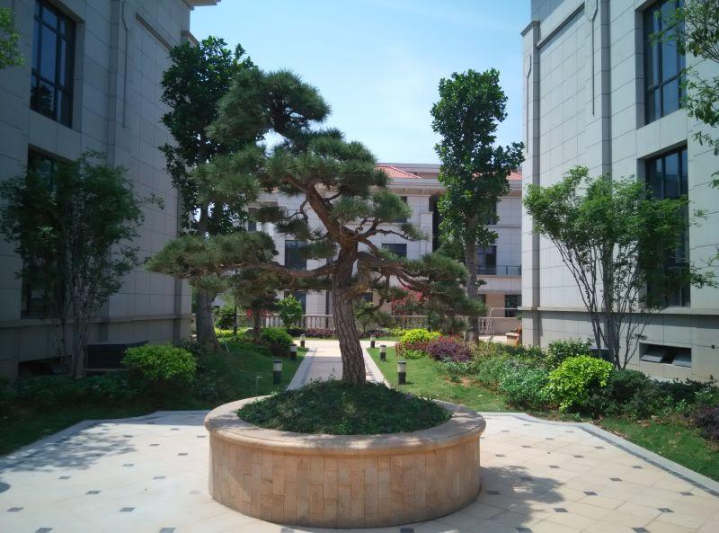 南安滨江首府 锦都园林-泉州锦都园林景观工程有限公司