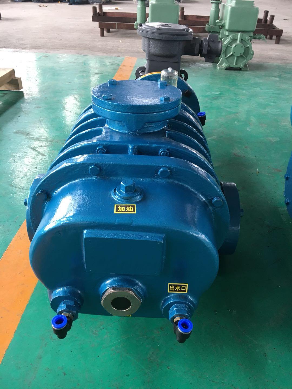 ZJ-150罗茨真空泵|罗茨真空泵-上海诚叶真空设备有限责任公司