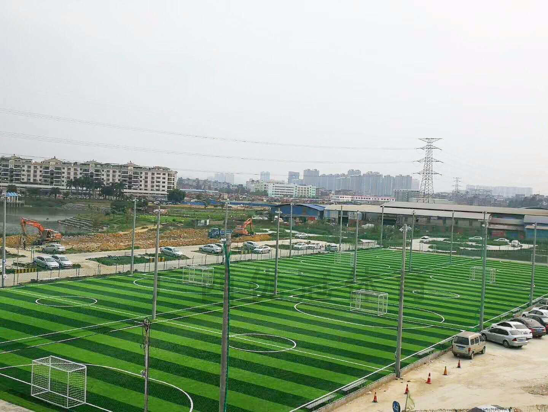 广西足球场人造草坪