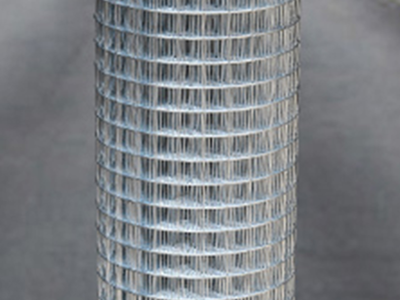 冷读锌电焊网|护栏网系列-四会市华通金属筛网制品有限公司