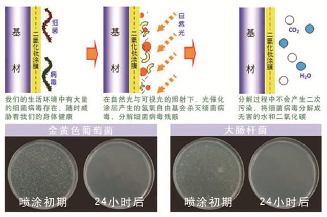 室内抗菌防霉2.jpg
