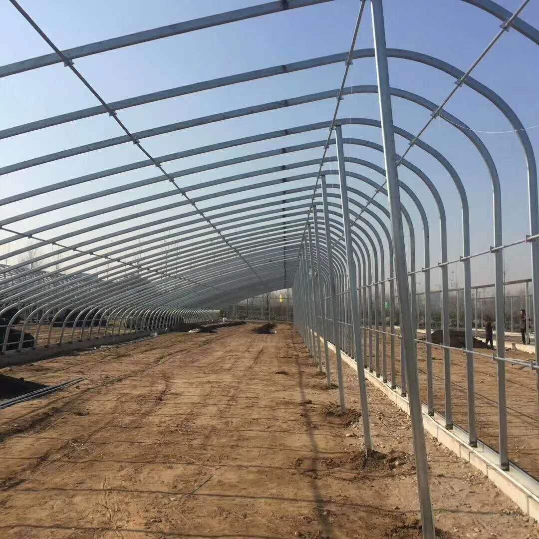 日光溫室大棚|蘭州溫室大棚-甘肅發迪溫室工程有限公司