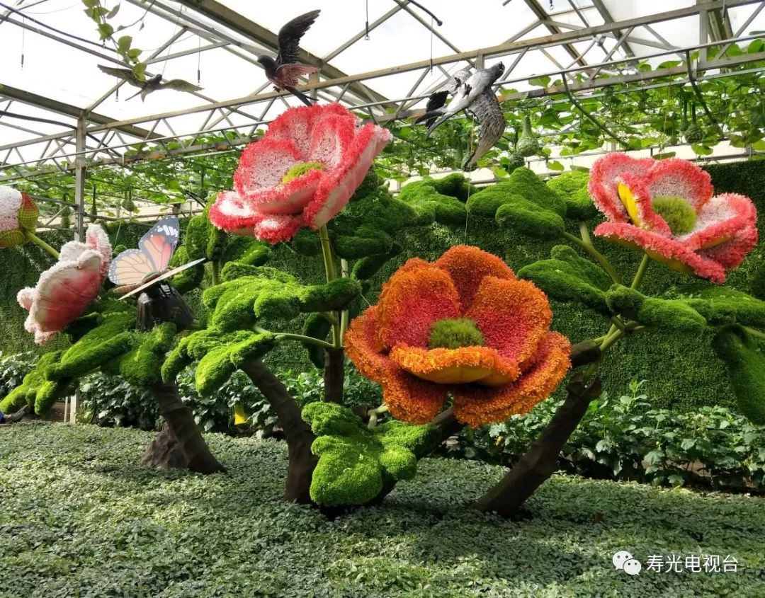 4月20日-5月30日,海容公司与您相约寿光蔬菜博览会!|行业资讯-东营海容新材料有限公司