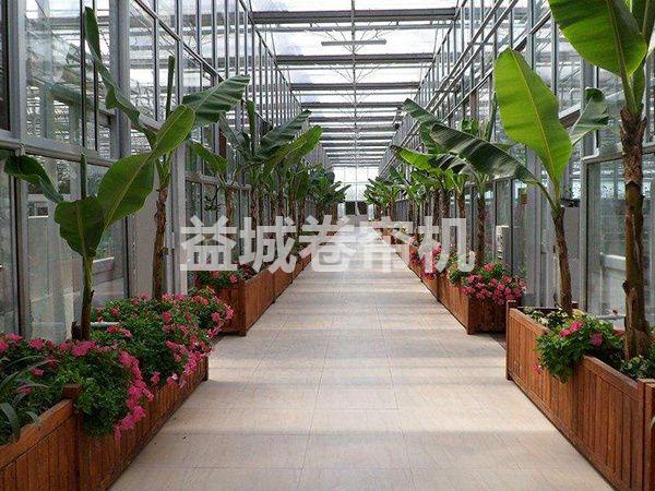 生态餐厅温室.png
