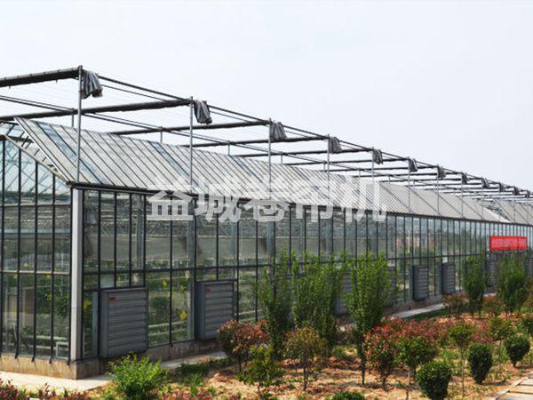 文洛式连栋玻璃温室大棚.png