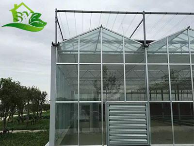 智能玻璃大棚|智能玻璃大棚-漳州市盛胤机械设备有限公司