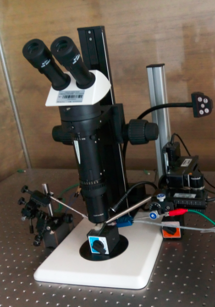 SSR系统简介|单细胞感受器电位记录系统-唐山定感科技有限公司