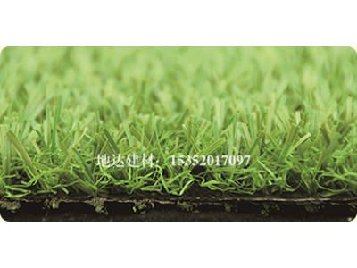 蘭州人造草坪