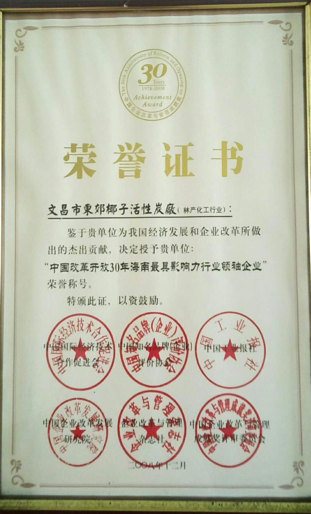 改革开放30年影响力企业_01.jpg