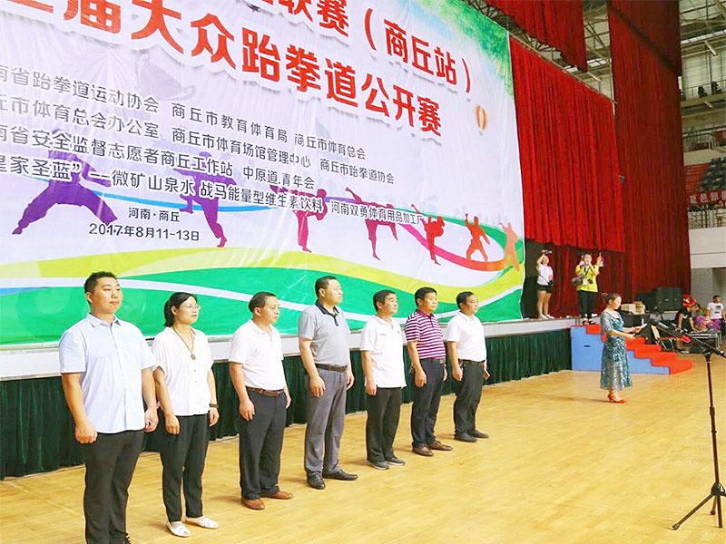 2017年商丘市第三届大众跆拳道世锦赛|双勇比赛-商丘双勇跆拳道