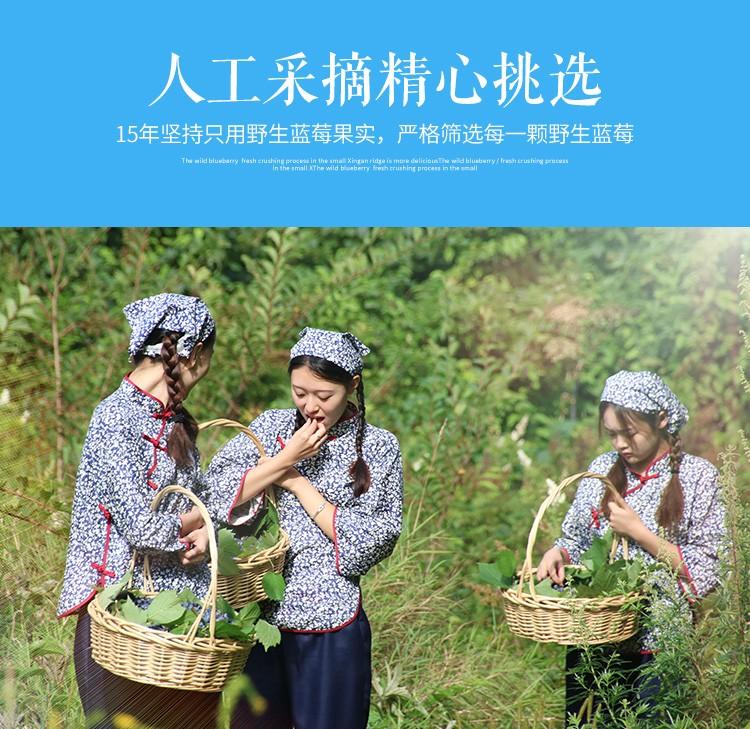伊村山野原釀藍莓酒