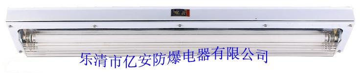 BHY系列防爆洁净荧光灯(IIC) 防爆荧光灯类-乐清亿安防爆电器有限公司