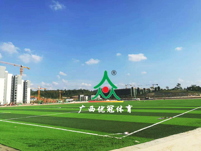 广西城市职业学院(崇左校区)|最新案例-广西优冠体育场地设施工程有限公司