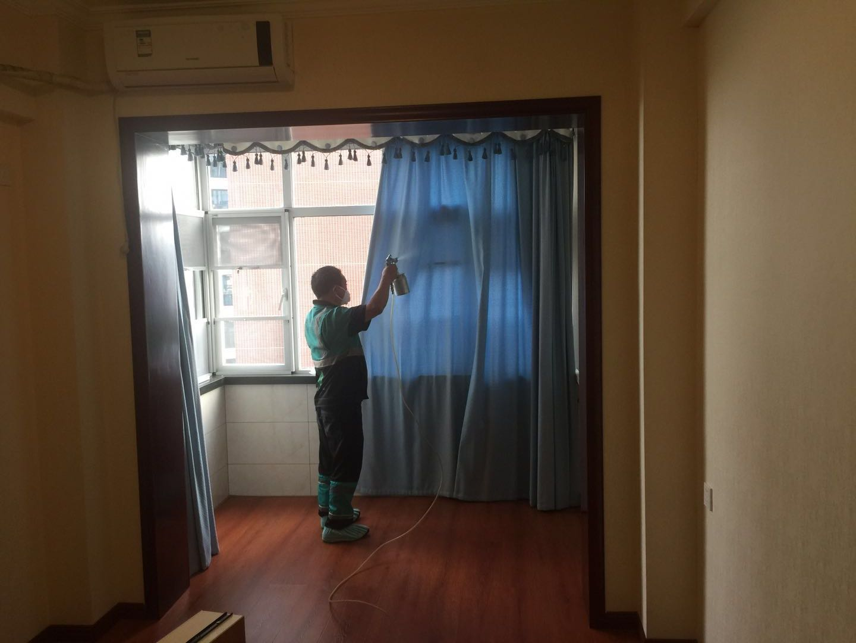 百步亭小区新居空气污染治理|家庭除甲醛异味-武汉小小叶子环保科技有限公司