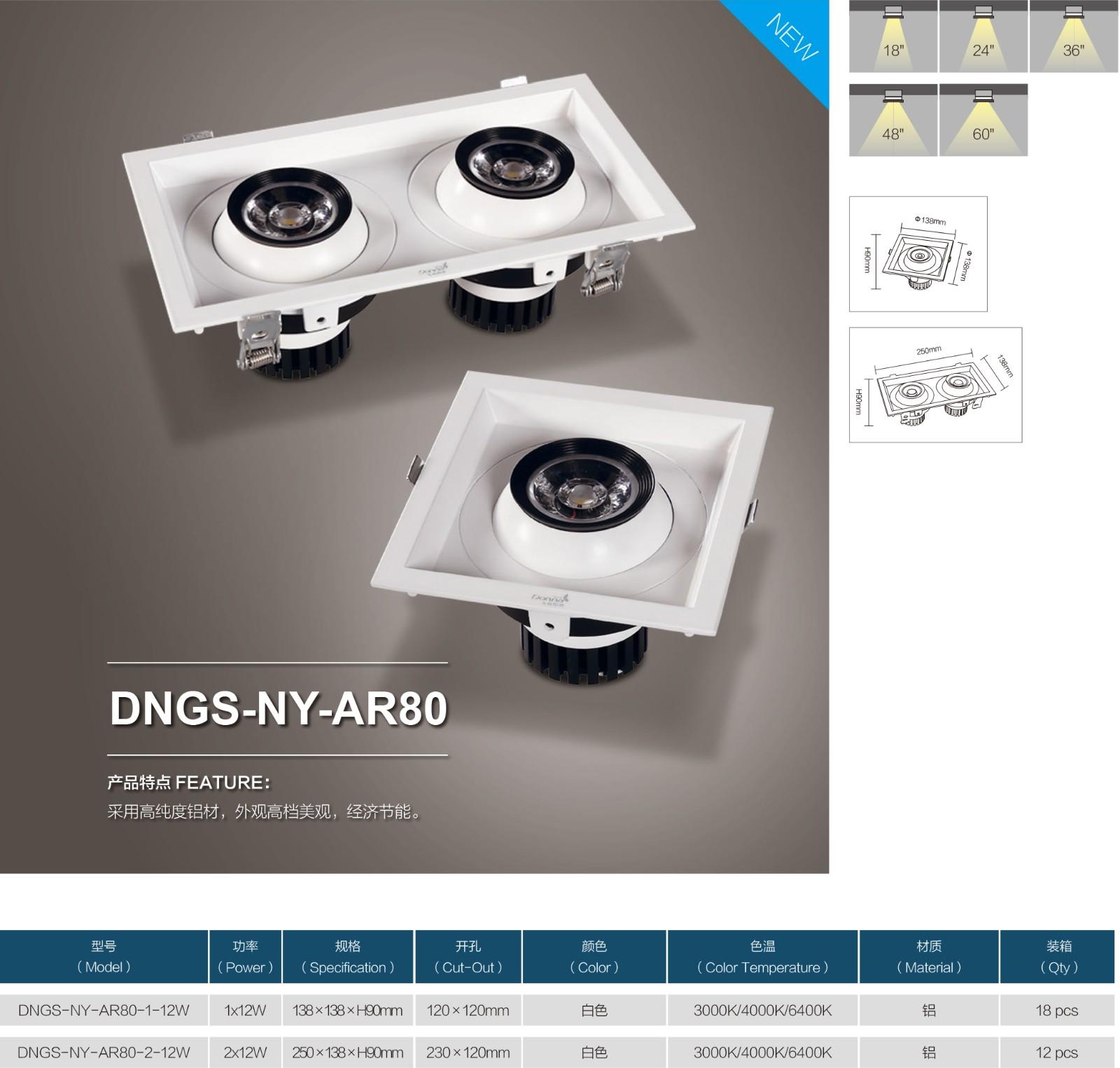 DNGS-NY-AR80-0.jpg