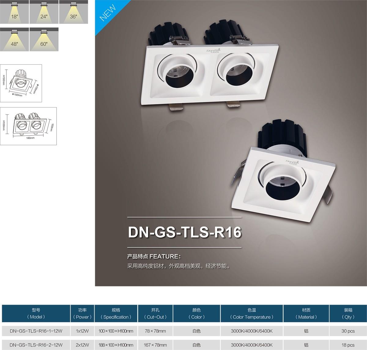 DN-GS-TLS-R16-0.jpg