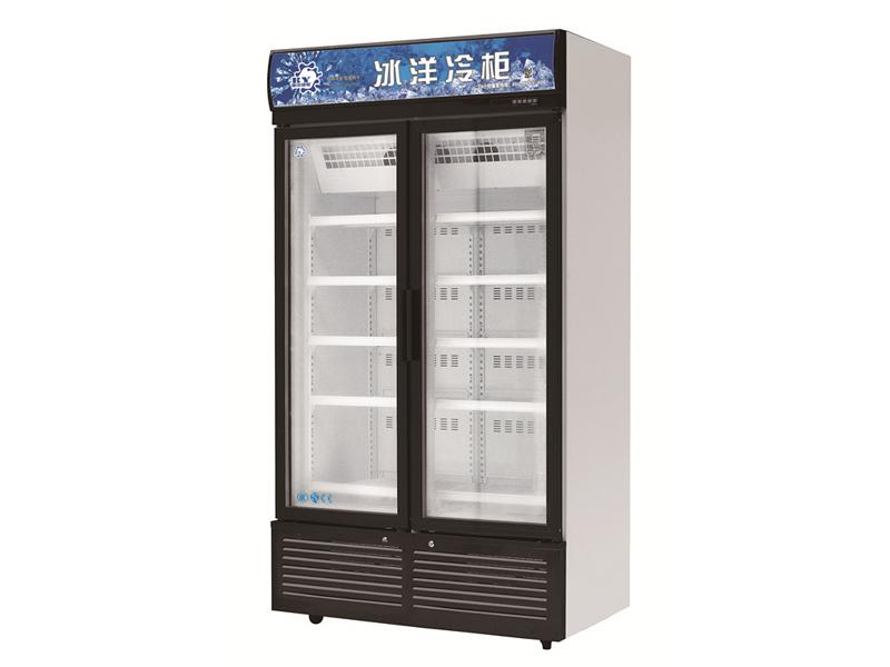 双门超低温展示冷柜(医用冷柜)-012.jpg
