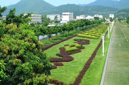 不能忽视的绿化施工质量问题