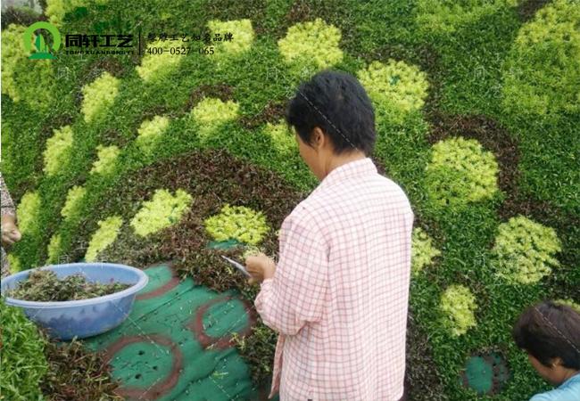 植物綠雕制作.jpg