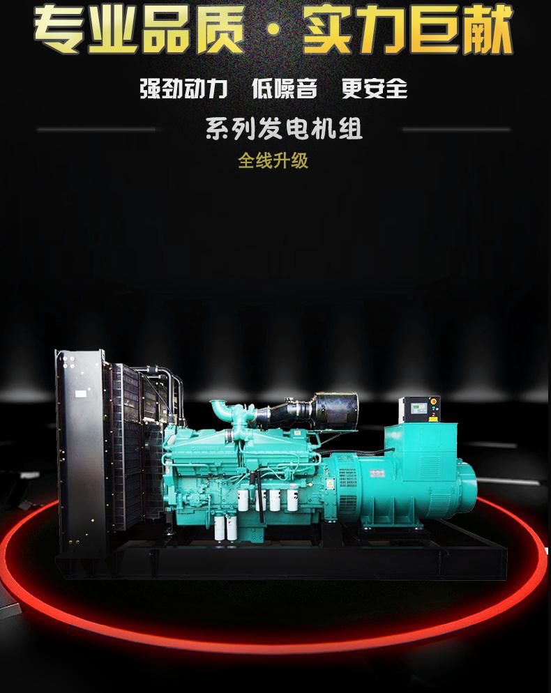 发电机组-05 200kw|康明斯系列柴油发电机组-潍坊奔马动力设备有限公司