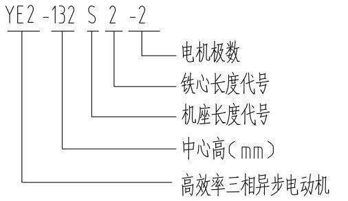 YE2.1.jpg